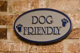 dog-friendly-restaurant